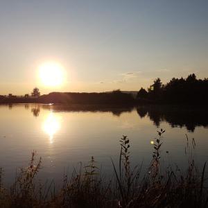 Riedsee Pforen kleinersee fkk